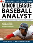 Minor League Baseball Analyst 2014