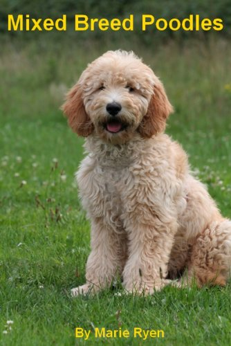 ... dog. Poodle mix breeds come in over 60 types including peekapoos