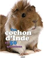 TON COCHON D'INDE EN 50 QUESTIONS
