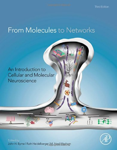 From Molecules To Networks, Third Edition: An Introduction To Cellular And Molecular Neuroscience