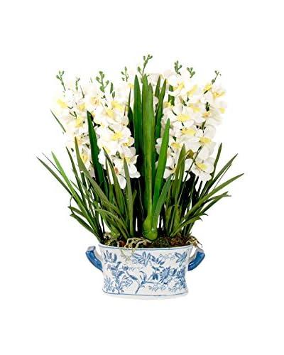 Creative Displays Inc. Vanda Orchid Planter, White/Green/Blue