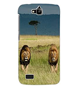 ColourCraft Lion and Lioness Design Back Case Cover for HUAWEI HONOR HOLLY