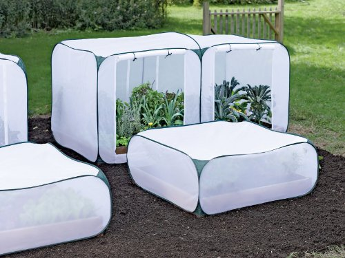Pop Up Beds front-631114