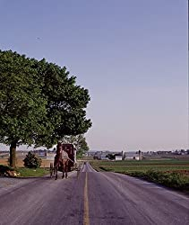 Amish Buggy Photograph - Beautiful 16x20-inch Photographic Print by Carol M. Highsmith