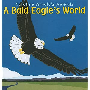 A Bald Eagle's World (Caroline Arnold's Animals)