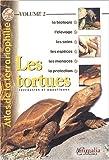 echange, troc Collectif - Les tortues terrestres et aquatiques