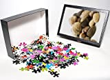 515GFDEhEhL. SL160 Photo Jigsaw Puzzle of Nuts from Science Photo Library Reviews