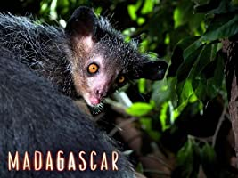 Madagascar - Season 1