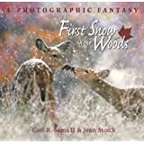 First Snow in the Woods: A Photographic Fantasy