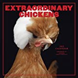 Extraordinary Chickens 2015 Wall Calendar
