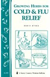 Growing Herbs for Cold & Flu Relief: Storey's Country Wisdom Bulletin A-219 (Storey Country Wisdom Bulletin)