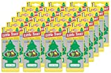 515GvK6JFAL. SL160  Little Trees Hanging Car and Home Air Freshener, Green Apple (Pack of 24)