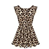 Zeagoo Women's Leisure Slim Fit Leopard Print Dress XL