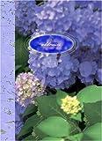 Paradise-Found-Mini-Address-Book