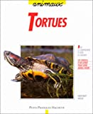 echange, troc Hartmut Wilke - Les tortues