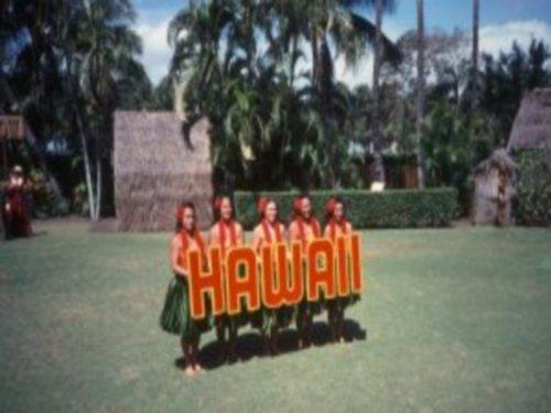 Plan Your Next Trip To Hawaii