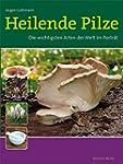 Heilende Pilze: Die wichtigsten Arten...