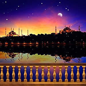 Amazon.com : Photography Backdrop - Arabian Nights with