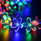 lederTEK Solar Fairy String Lights 21ft 50 LED Multi-color Blossom Decorative Gardens, Lawn, Patio, Christmas Trees, Weddings, Parties, Indoor and Outdoor Use (50 LED Multi-color)