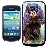Fancy A Snuggle Cavalier King Charles Spaniel Dog Sitting Clip-on Hard Back Cover for Samsung Galaxy S3 Mini i8190