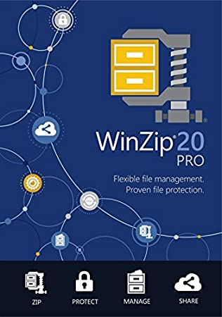 Winzip 20 Pro (PC)