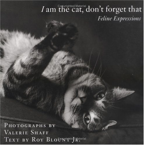 I Am the Cat, Dont Forget That : Feline Expressions, VALERIE SHAFF, ROY BLOUNT