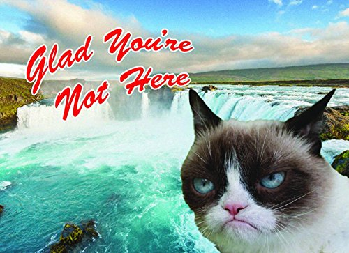 Grumpy Cat Postcard Book: 30 Postcards, Unlimited Frowns 30pcs in one postcard owe you a song romantic love christmas postcards greeting birthday message cards 10 2x14 2cm
