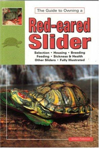 Red Eared Slider Turtles, JORDAN PATTERSON