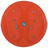 Acupressure Health Care Product Acp Magnetic Body Weight Reducer Twister (32 Cm X 32 Cm X 3 Cm, Assorted)