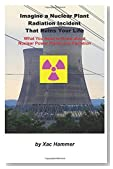 Imagine a Nuclear Plant Radiation Incident That Ruins Your Life: What You Need to Know about Nuclear Power Plants and Radiation