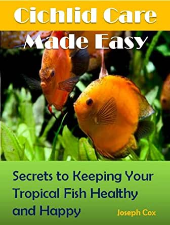 Cichlid care made easy simple ways to keeping your for Easy to care for fish