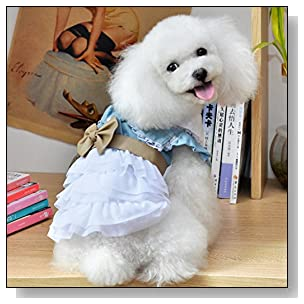 ZoonPark? Fairy Denim Dog Dress for Dog Clothes Charming Cozy Dog Shirt Pet Dress (M)