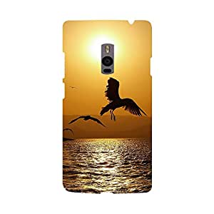 Phone Candy Designer Back Cover with direct 3D sublimation printing for OnePlus 2