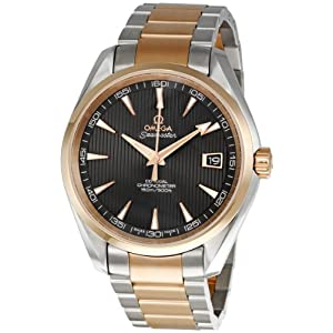 Omega Men's 231.20.42.21.06.001 Aqua Terra Grey Dial Watch