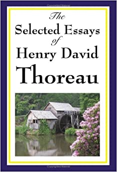 henry david thoreau and the counterculture essay Free college essay henry david thoreau henry david thoreau was bon on july 12, 1817 in concord, massachusetts, on his grandmother's farm thoreau was of french.