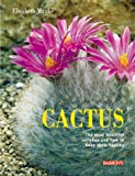 img - for Cactus: The most beautiful varieties and how to keep them healthy book / textbook / text book