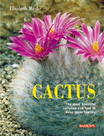 Cactus: The most beautiful varieties and how to keep them healthy