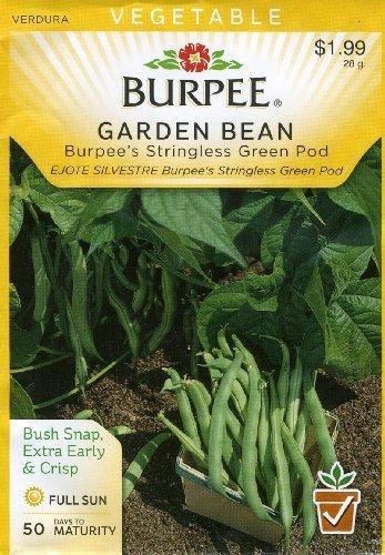 burpee-56473-bean-bush-snap-burpees-stringless-green-pod-seed-packet-by-burpee