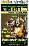 Miniature Pinscher, Miniature PinscherTraining AAA AKC: |Think Like a Dog, But Don't Eat Your Poop! | Miniature Pinscher Breed Expert Training |: Here's EXACTLY How To Train Your Miniature Pinscher