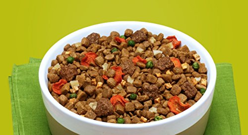 Rachael ray nutrish dish natural dry dog food chicken brown rice rachael ray nutrish dish natural dry dog food forumfinder Images