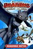 DreamWorks' Dragons: Riders of Berk - Volume 2: Dangerous Depths (How to Train Your Dragon Graphic Novels)