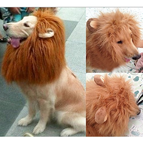 Wotefusi Halloween Pet Dog Cat Lion Wigs Mane Hair Festival Party Fancy Clothes Costume with Ears