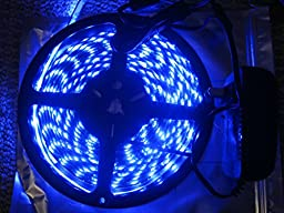 Waterproof LED 3528 SMD 300LED 5M Flexible Light Strip 12V 2A 24W 60LED/M Blue