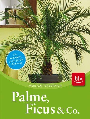 palmenbuch f r einsteiger empfehlungen. Black Bedroom Furniture Sets. Home Design Ideas