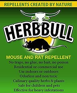 Amazon.com : Herbbull Mouse & Rat Repellent : Patio, Lawn