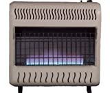 Sure Heat WGSH30BFNG Sure Heat 30,000 BTU Blue Flame Gas Space Heater with Thermostat and Blower, Natural Gas