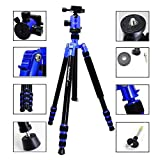 koolehaoda Professional DSLR Camera Tripod Monopod with Fluid Head Ball Head ,Travel Bag Compact Lightweight For Digital Camera and DSLR Canon Sony, Nikon etc (Blue )