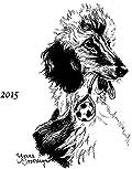 Laurelwood Afghan Hound 2015 Plate
