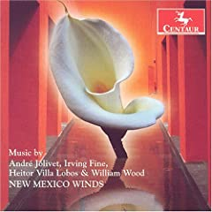New Mexico Winds cover