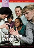 img - for The Endocrine System (Human Body Systems) book / textbook / text book